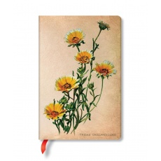 Paperblanks® Painted Botanicals Notes w linie Woodland Daisies Mini